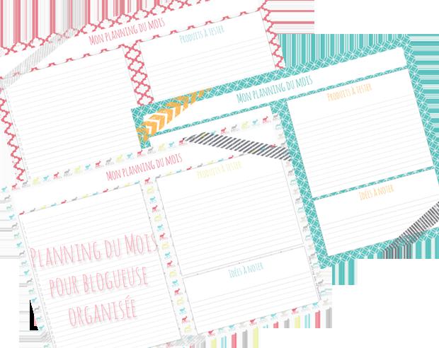 planning-mensuel-blog-visuel