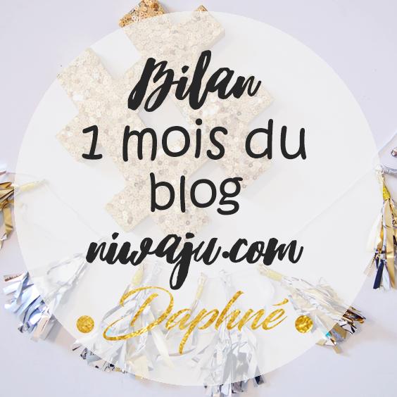 bilan-1-mois-blog